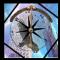Bird Compass