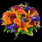 Flower Compasses