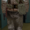 1st Ranger - Medic