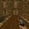 Beretta 9mm (1)